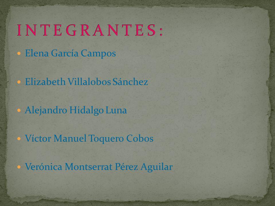 Elena García Campos Elizabeth Villalobos Sánchez Alejandro Hidalgo Luna Víctor Manuel Toquero Cobos Verónica Montserrat Pérez Aguilar
