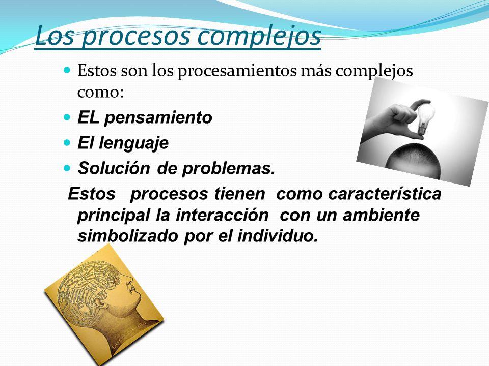 Los procesos complejos Estos son los procesamientos más complejos como: EL pensamiento El lenguaje Solución de problemas. Estos procesos tienen como c