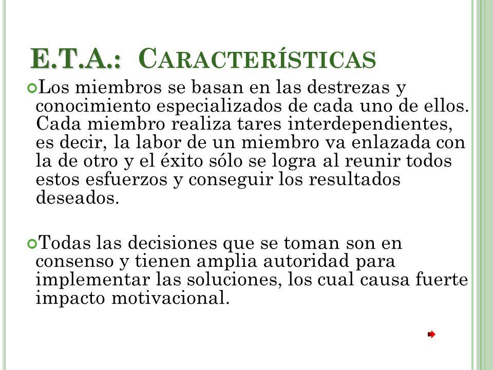 E.T.A.: E.T.A.: C ARACTERÍSTICAS Los miembros se basan en las destrezas y conocimiento especializados de cada uno de ellos.