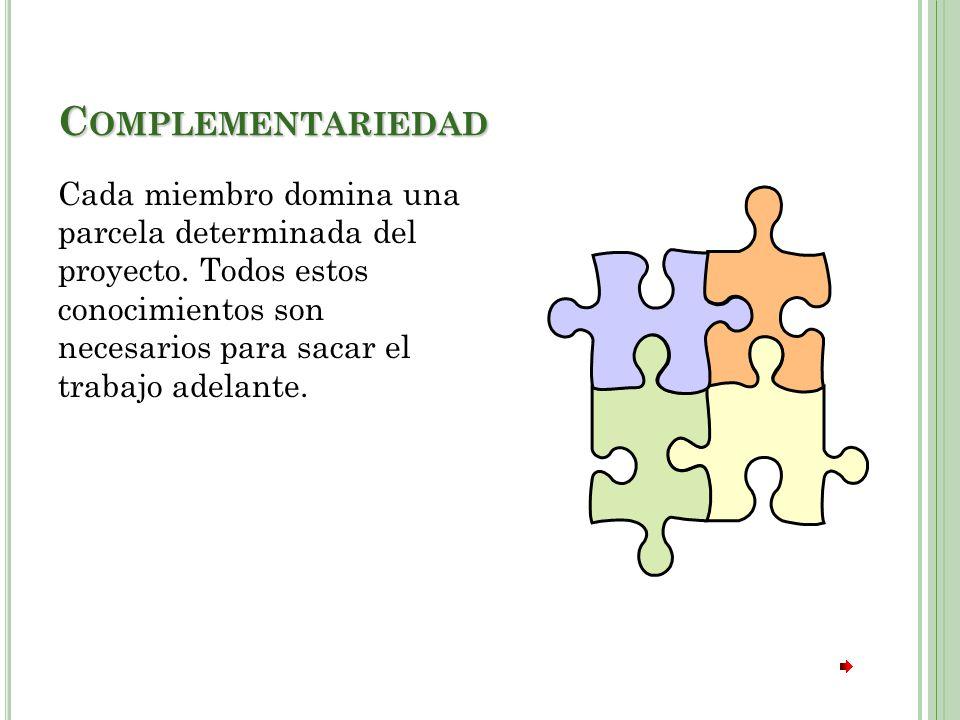 C OMPLEMENTARIEDAD Cada miembro domina una parcela determinada del proyecto.
