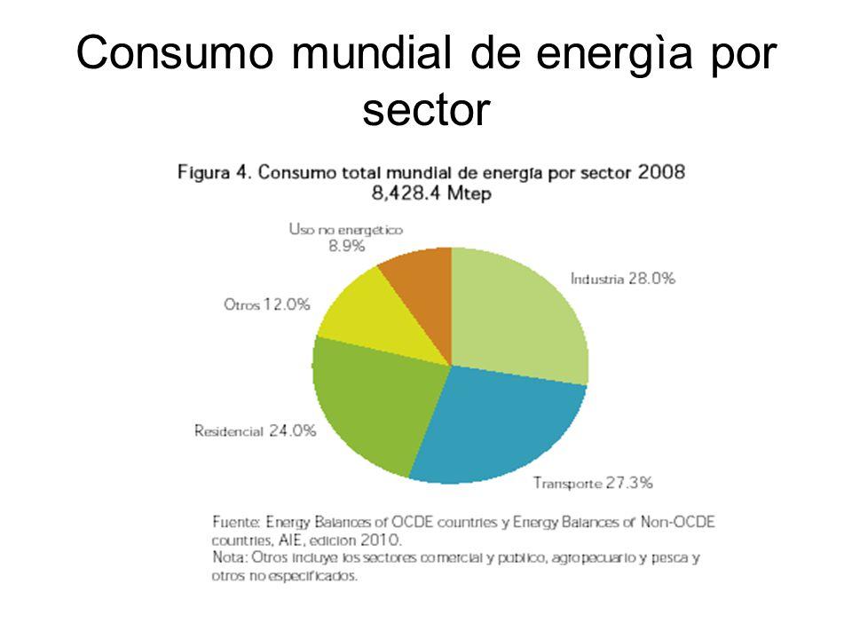Consumo mundial de energìa por sector