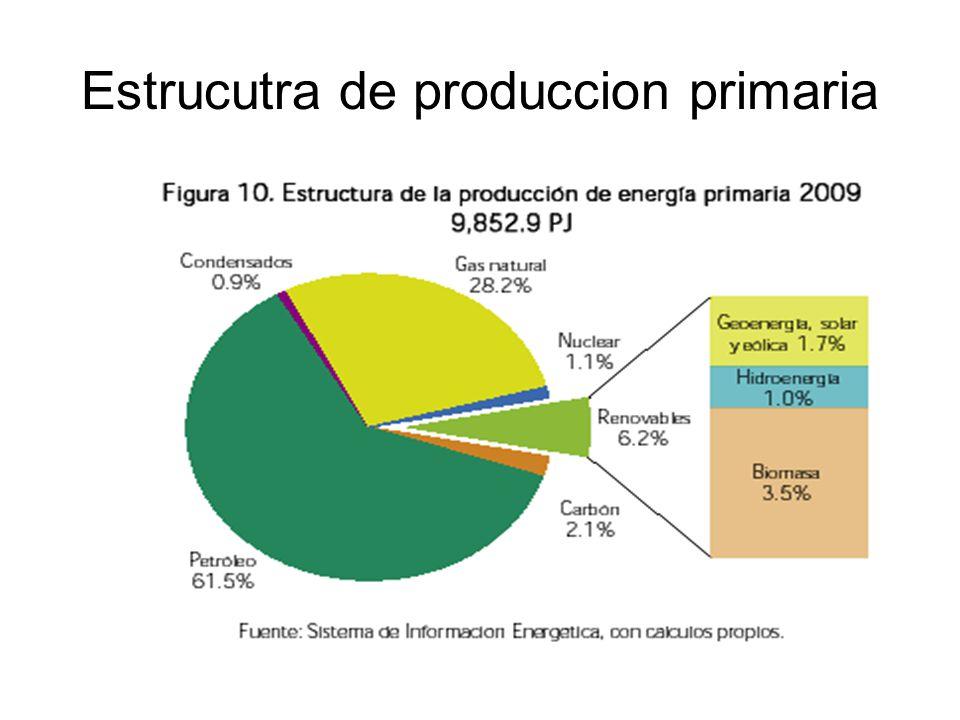 Estrucutra de produccion primaria