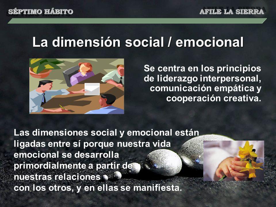 La dimensión social / emocional Se centra en los principios de liderazgo interpersonal, comunicación empática y cooperación creativa. Las dimensiones