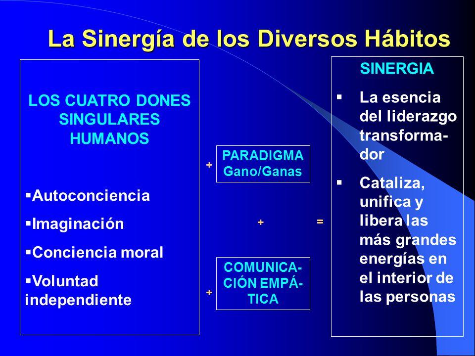 Sinergia en la renovación Al afilar la dimensión física, reforzamos nuestra visión personal. Al reforzar la dimensión espiritual, reforzamos el lidera