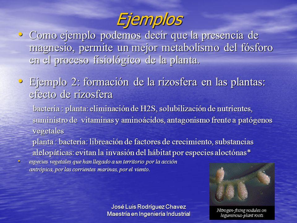 José Luis Rodríguez Chavez Maestría en Ingeniería Industrial Como ejemplo podemos decir que la presencia de magnesio, permite un mejor metabolismo del