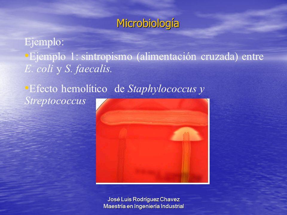 José Luis Rodríguez Chavez Maestría en Ingeniería Industrial Microbiología Ejemplo: Ejemplo 1: sintropismo (alimentación cruzada) entre E. coli y S. f