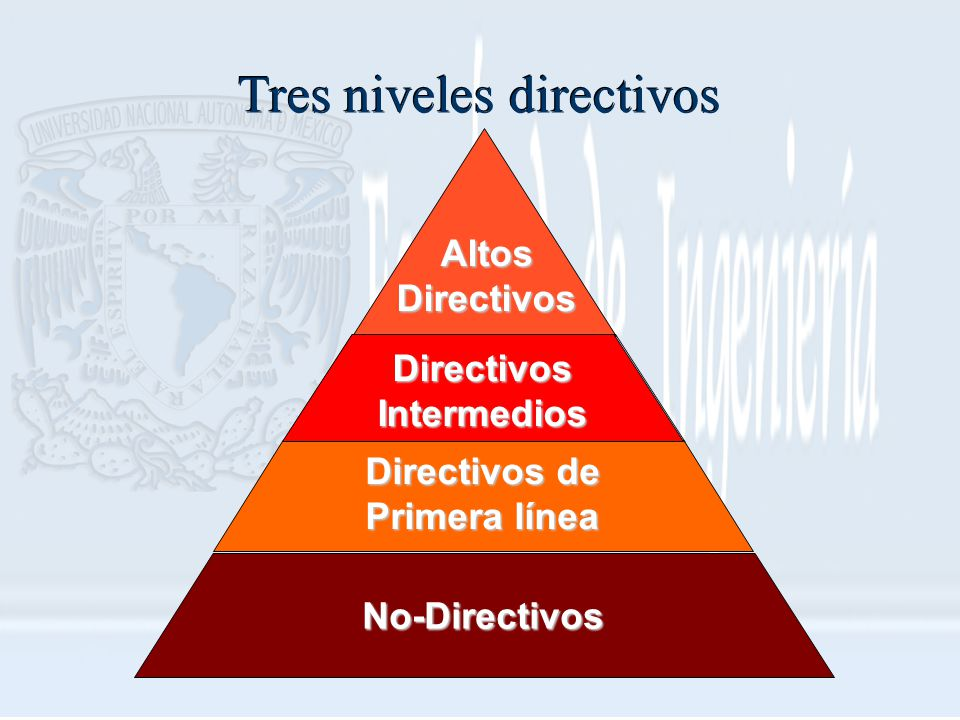 Altos Directivos Directivos Intermedios Directivos de Primera línea No-Directivos Tres niveles directivos
