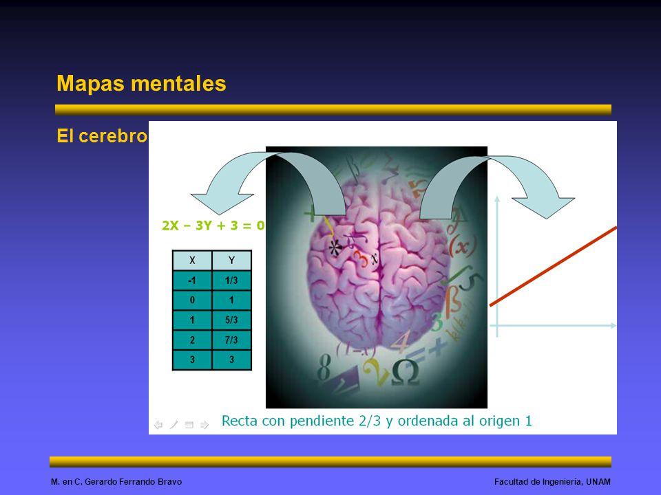 Facultad de Ingeniería, UNAMM. en C. Gerardo Ferrando Bravo Mapas mentales El cerebro