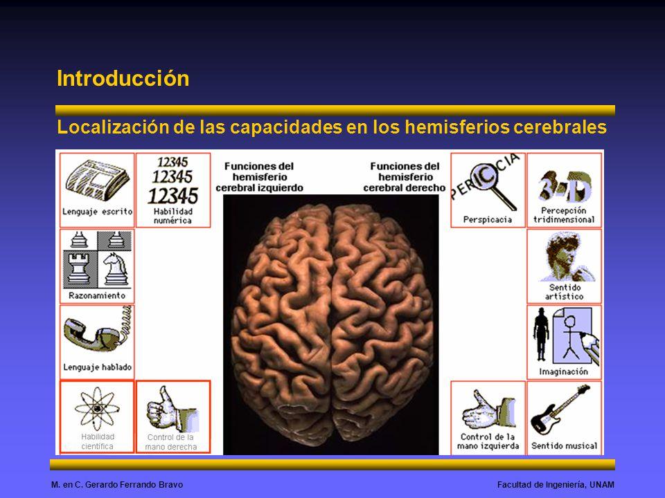 Facultad de Ingeniería, UNAMM. en C. Gerardo Ferrando Bravo Introducción Localización de las capacidades en los hemisferios cerebrales