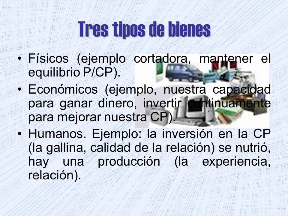 Tres tipos de bienes Físicos (ejemplo cortadora, mantener el equilibrio P/CP). Económicos (ejemplo, nuestra capacidad para ganar dinero, invertir cont