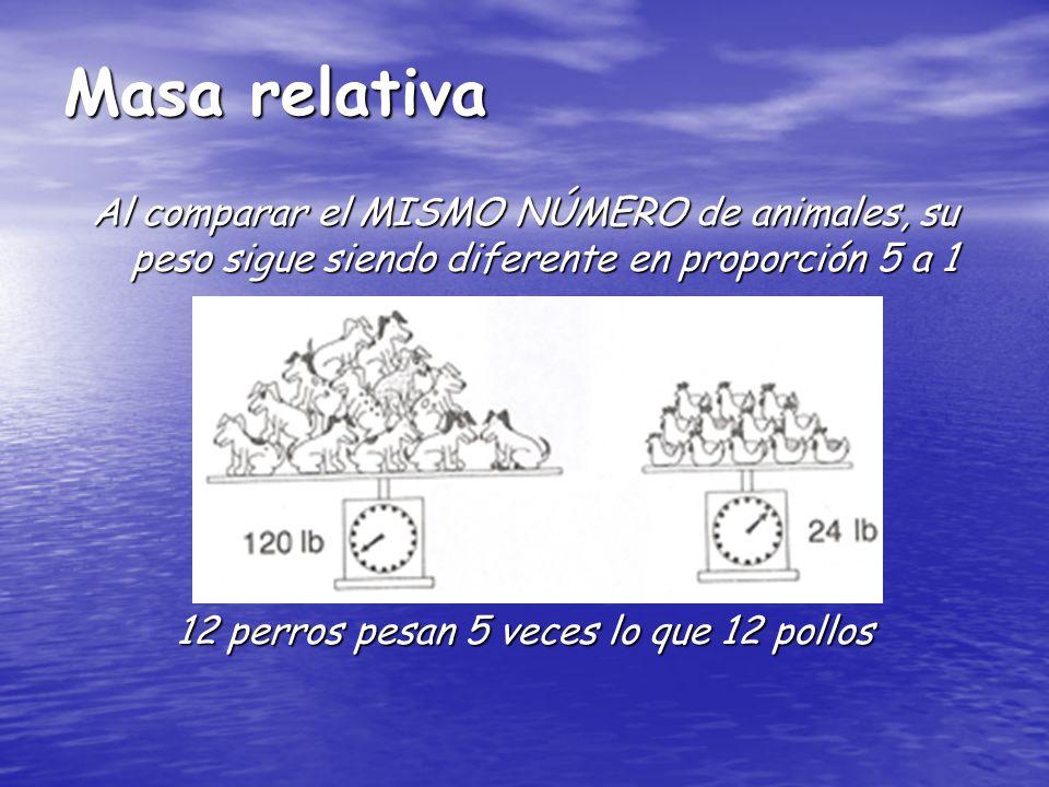 Masa relativa Al comparar el MISMO NÚMERO de animales, su peso sigue siendo diferente en proporción 5 a 1 12 perros pesan 5 veces lo que 12 pollos