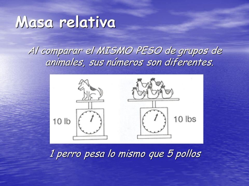 Masa relativa Al comparar el MISMO PESO de grupos de animales, sus números son diferentes. 1 perro pesa lo mismo que 5 pollos
