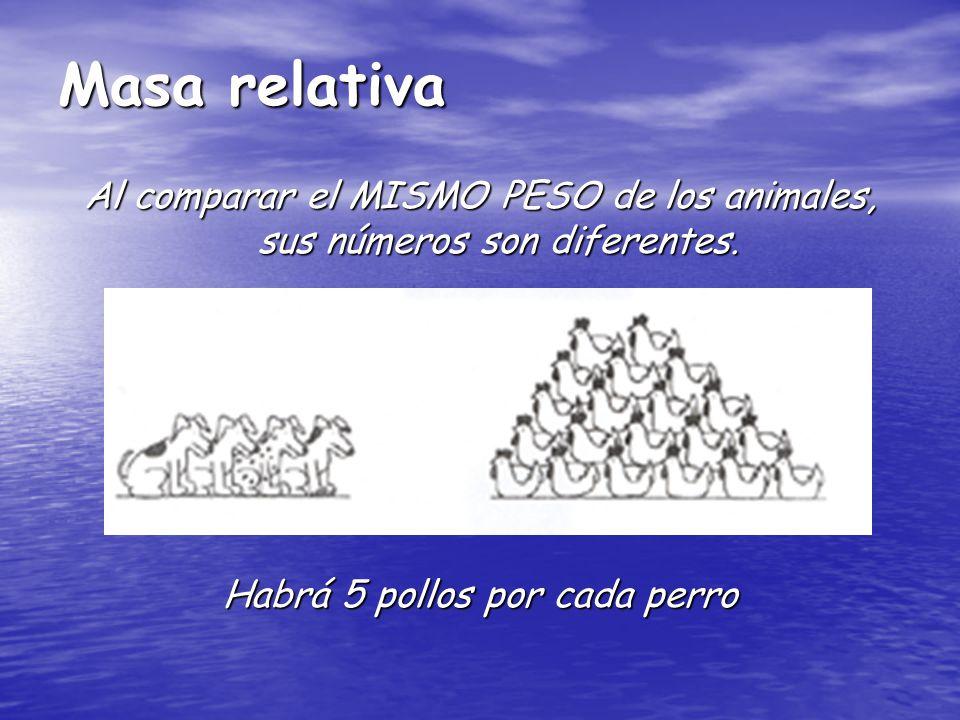 Masa relativa Al comparar el MISMO PESO de los animales, sus números son diferentes. Habrá 5 pollos por cada perro