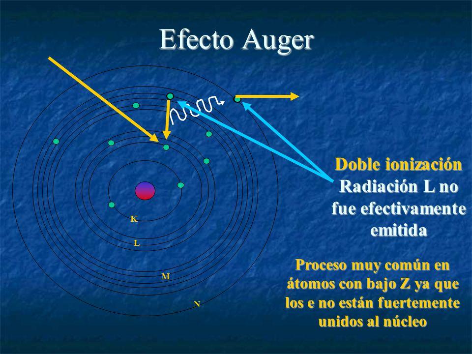 Efecto Auger L K M N Doble ionización Radiación L no fue efectivamente emitida Proceso muy común en átomos con bajo Z ya que los e no están fuertemente unidos al núcleo