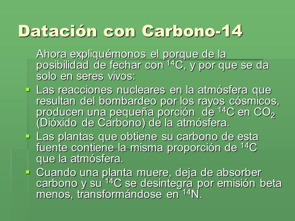 Datación con Carbono-14 Ahora expliquémonos el porque de la posibilidad de fechar con 14 C, y por que se da solo en seres vivos: Las reacciones nuclea