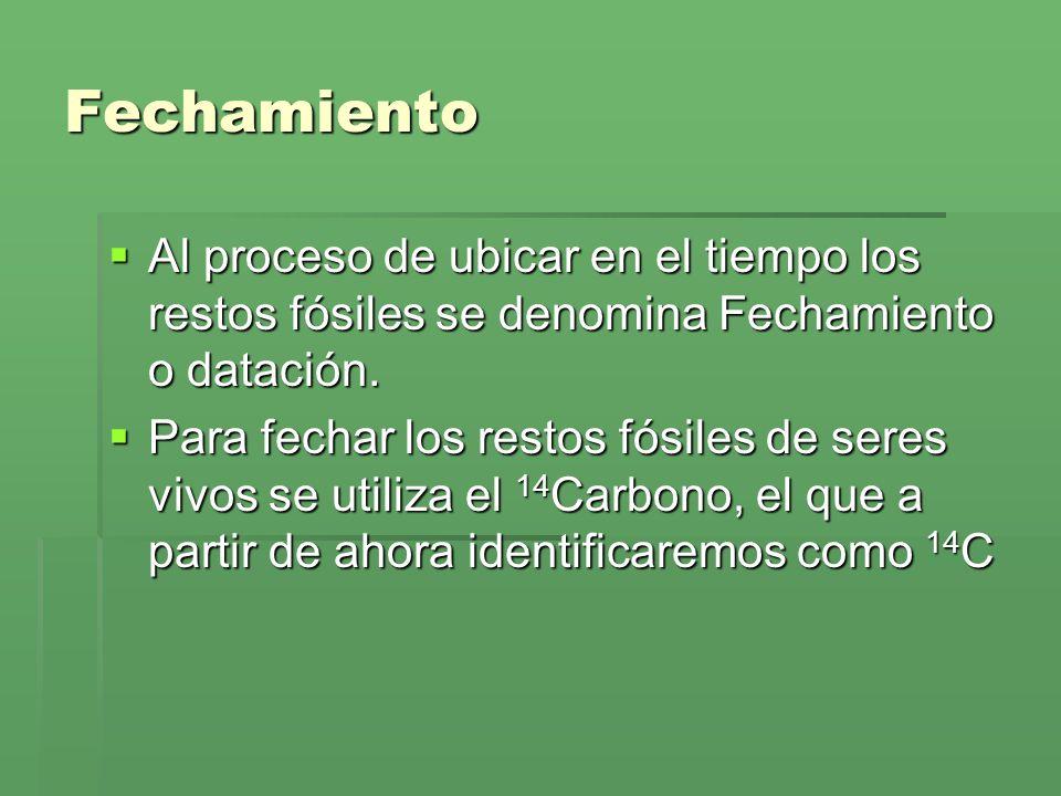 ¿Qué es el Carbono 14.