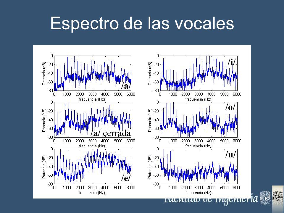 Espectro de las vocales /a/ /e/ /a/ cerrada /i/ /o/ /u/