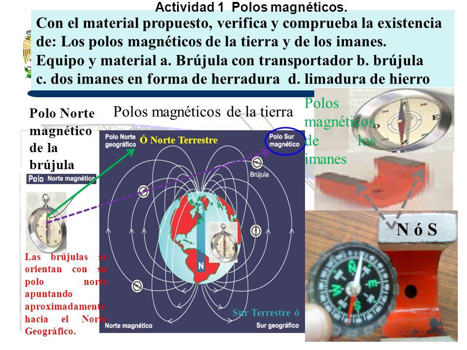 Ó Norte Terrestre Sur Terrestre ó Las brújulas se orientan con su polo norte apuntando aproximadamente hacia el Norte Geográfico. Con el material prop