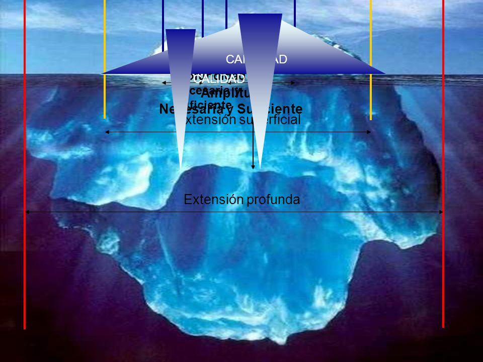 Extensión superficial Extensión profunda Amplitud Necesaria y Suficiente Profundidad Necesaria y Suficiente CANTIDAD CALIDAD