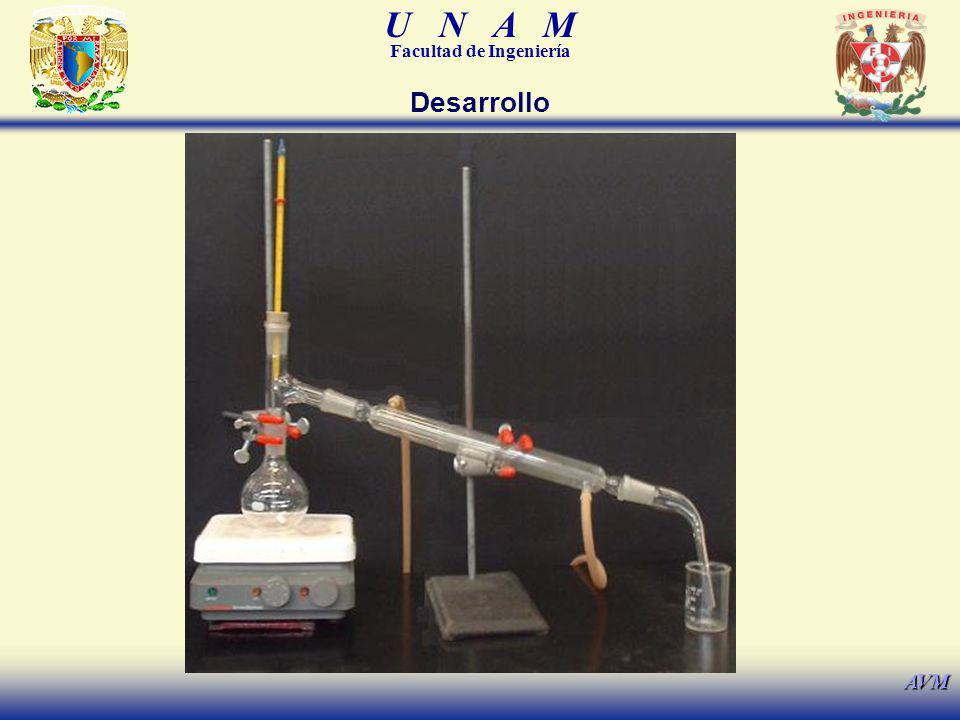 U N A M Facultad de Ingeniería AVM Desarrollo