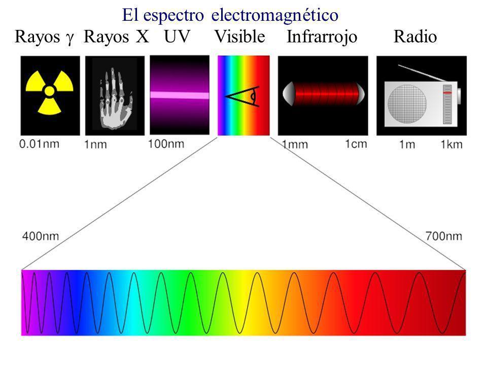 Rayos Rayos X UV Visible Infrarrojo Radio El espectro electromagnético