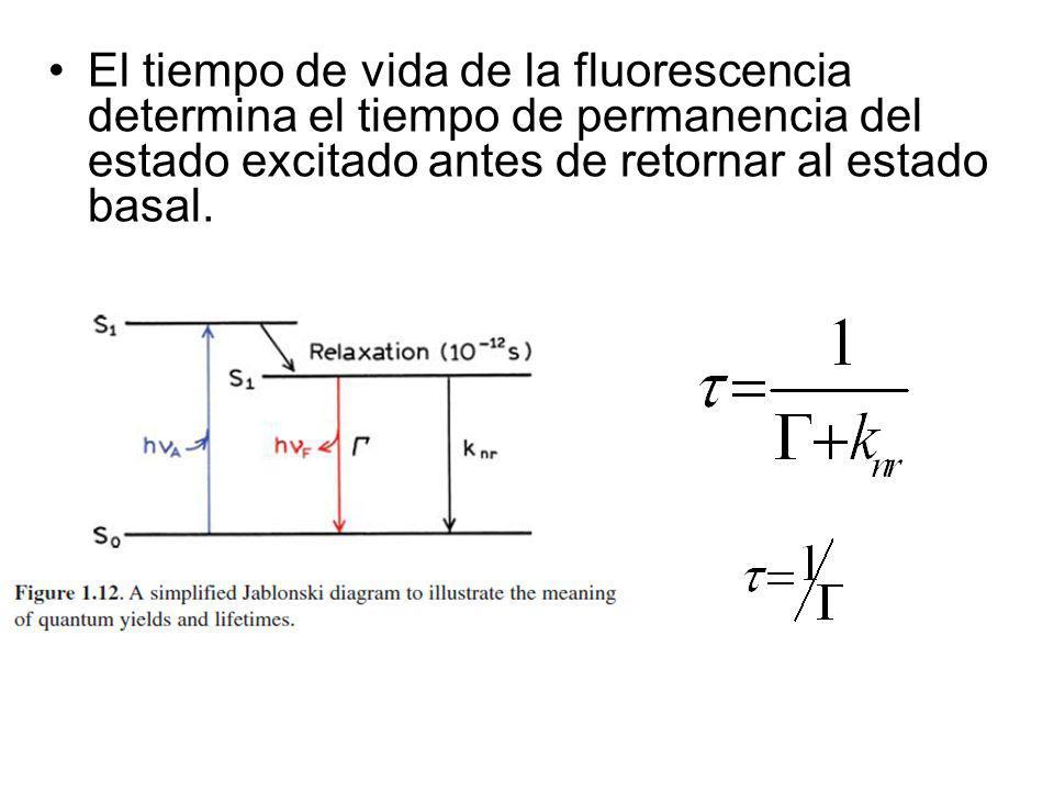 El tiempo de vida de la fluorescencia determina el tiempo de permanencia del estado excitado antes de retornar al estado basal.