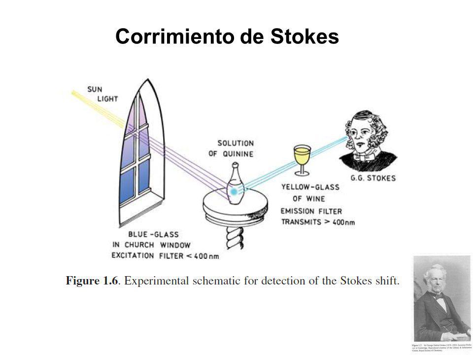 Tiempo de vida y eficiencia cuántica La eficiencia cuántica es la relación entre el número de fotones emitidos y el número de fotones absorbidos Donde Γ es la velocidad de emisión del fluoróforo y k nr es la velocidad de decaimiento no radiativo Cercano a la unidad