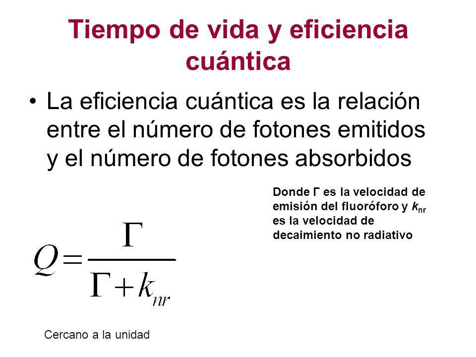Tiempo de vida y eficiencia cuántica La eficiencia cuántica es la relación entre el número de fotones emitidos y el número de fotones absorbidos Donde