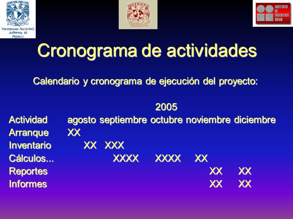 Cronograma de actividades Calendario y cronograma de ejecución del proyecto: 2005 Actividadagosto septiembre octubre noviembre diciembre ArranqueXX Inventario XX XXX Cálculos...