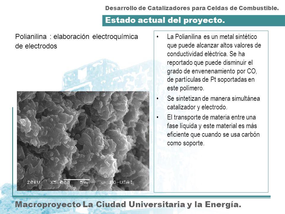 Estado actual del proyecto. Desarrollo de Catalizadores para Celdas de Combustible. Polianilina : elaboración electroquímica de electrodos Macroproyec