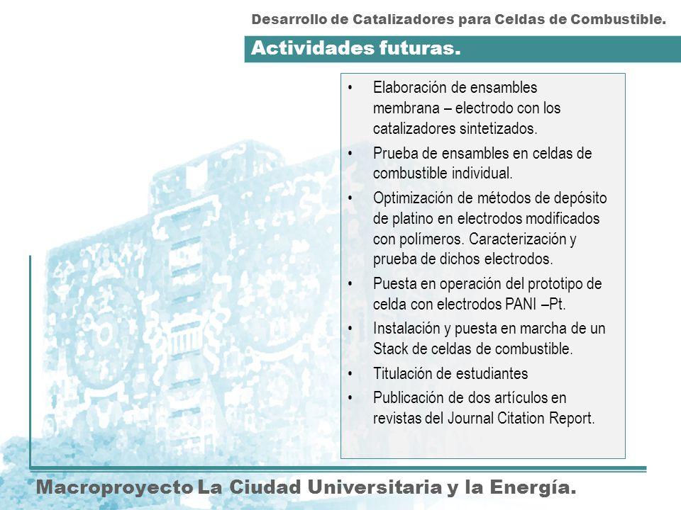 Actividades futuras. Macroproyecto La Ciudad Universitaria y la Energía. Elaboración de ensambles membrana – electrodo con los catalizadores sintetiza