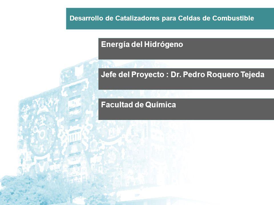 Energía del Hidrógeno Jefe del Proyecto : Dr. Pedro Roquero Tejeda Desarrollo de Catalizadores para Celdas de Combustible Facultad de Química
