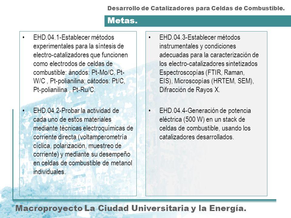 Metas. Macroproyecto La Ciudad Universitaria y la Energía. EHD.04.3-Establecer métodos instrumentales y condiciones adecuadas para la caracterización