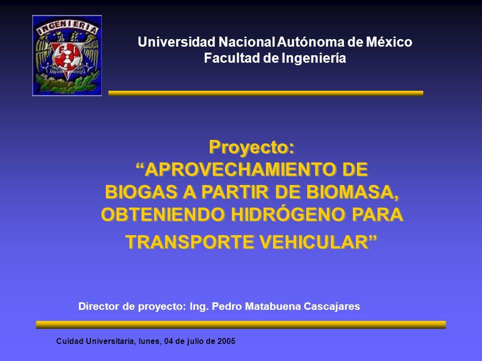 Universidad Nacional Autónoma de México Facultad de Ingeniería Director de proyecto: Ing. Pedro Matabuena Cascajares Proyecto: APROVECHAMIENTO DE BIOG