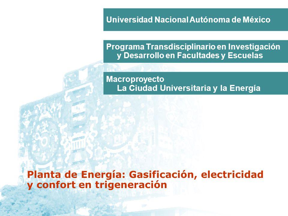 Programa Transdisciplinario en Investigación y Desarrollo en Facultades y Escuelas Macroproyecto La Ciudad Universitaria y la Energía Universidad Naci