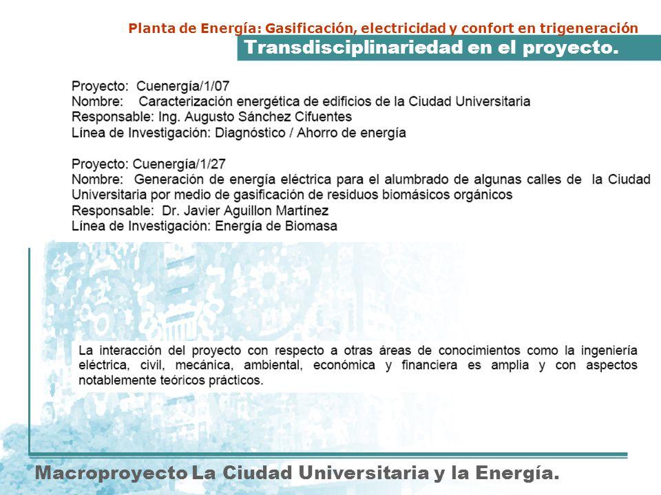 Transdisciplinariedad en el proyecto. Macroproyecto La Ciudad Universitaria y la Energía. Planta de Energía: Gasificación, electricidad y confort en t