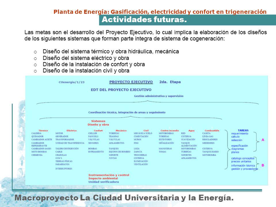 Actividades futuras. Macroproyecto La Ciudad Universitaria y la Energía. Planta de Energía: Gasificación, electricidad y confort en trigeneración