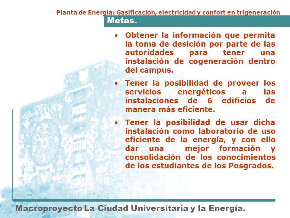 Metas. Macroproyecto La Ciudad Universitaria y la Energía. Planta de Energía: Gasificación, electricidad y confort en trigeneración Obtener la informa