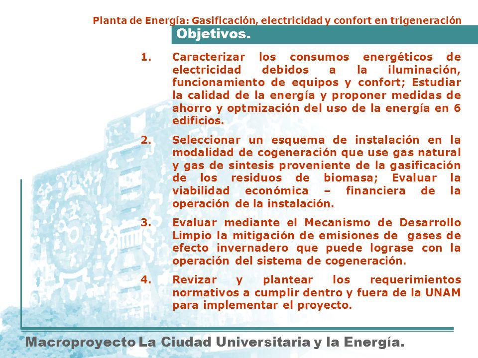 Objetivos. Macroproyecto La Ciudad Universitaria y la Energía. Planta de Energía: Gasificación, electricidad y confort en trigeneración 1.Caracterizar