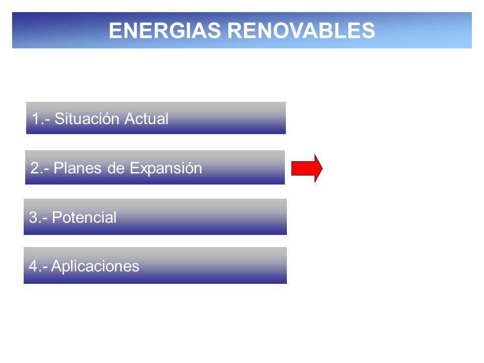 SECRETARÍA DE ENERGÍA A lo largo de los próximos 10 años (2005-2014), CFE está estudiando la posibilidad de instalar: 450 MW (1,700 GWh/año) eólicos, 2,600 MW (8,577 GWh/año) de grandes hidroeléctricas y 217 MW (1,500 GWh/año) de geotermia Permisos para generación con fuentes renovables * Fuente: Comisión Reguladora de Energía.