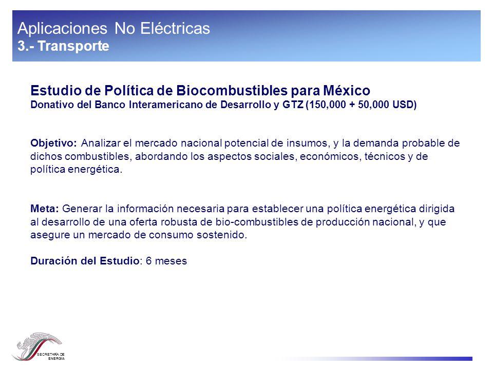 SECRETARÍA DE ENERGÍA Aplicaciones No Eléctricas 3.- Transporte Estudio de Política de Biocombustibles para México Donativo del Banco Interamericano d