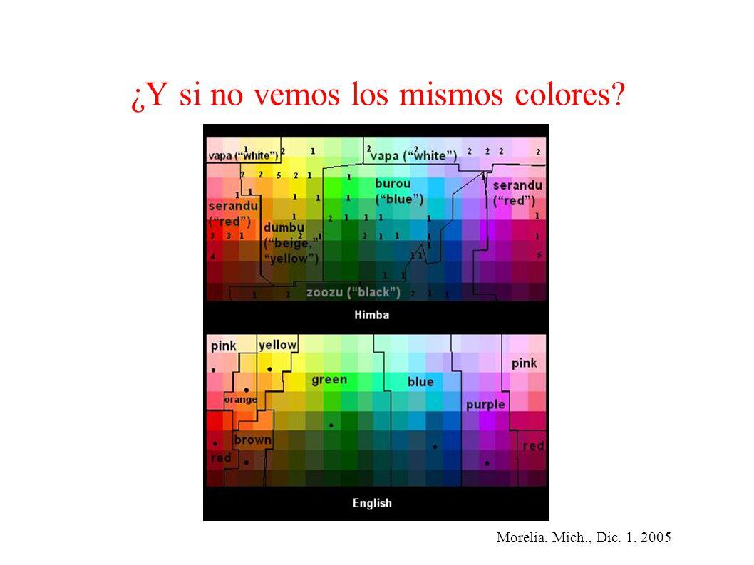 Morelia, Mich., Dic. 1, 2005 ¿Y si no vemos los mismos colores