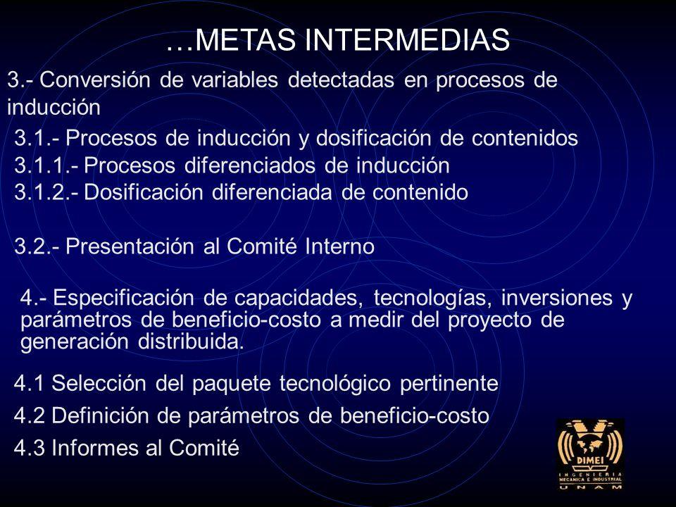 2.- Diferenciar las variables de cooperación y detracción 2.1.- Detección de ambos tipos de variables 2.2.- Redacción de informes de la investigación 2.2.1.- Redacción del informe de la investigación 2.2.2.- Informe ejecutivo para el Comité Interno del Megaproyecto …METAS INTERMEDIAS