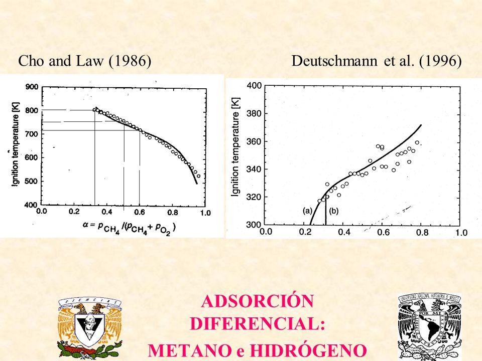 ADSORCIÓN DIFERENCIAL: METANO e HIDRÓGENO Cho and Law (1986)Deutschmann et al. (1996)