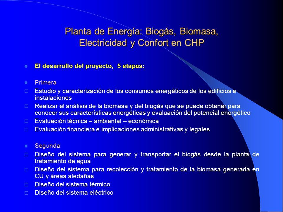 Planta de Energía: Biogás, Biomasa, Electricidad y Confort en CHP El desarrollo del proyecto, 5 etapas: Primera Estudio y caracterización de los consu