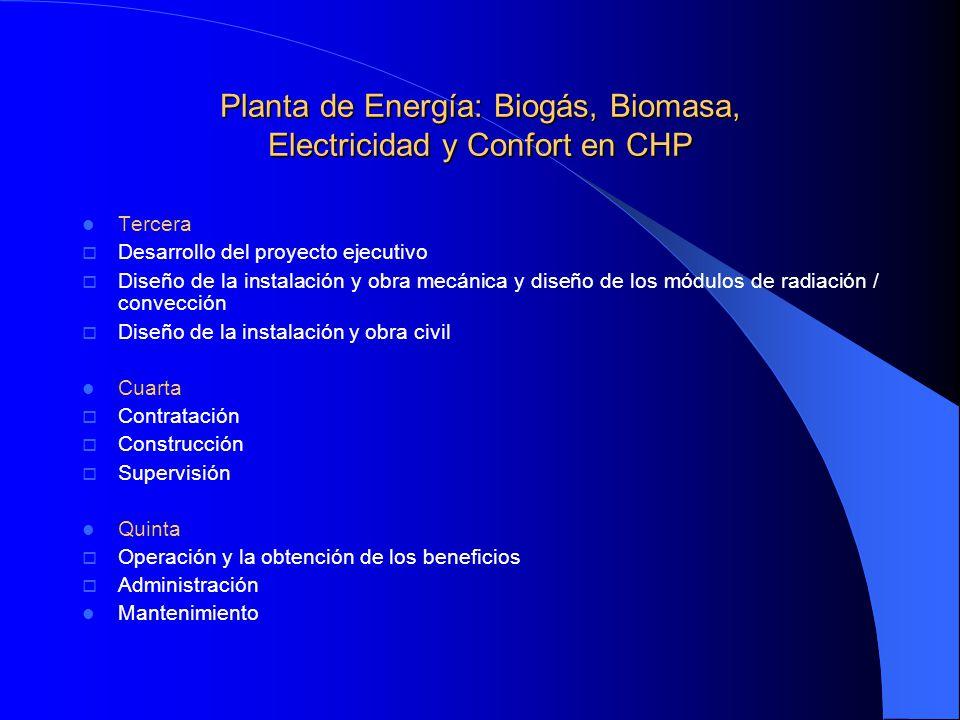Planta de Energía: Biogás, Biomasa, Electricidad y Confort en CHP Tercera Desarrollo del proyecto ejecutivo Diseño de la instalación y obra mecánica y