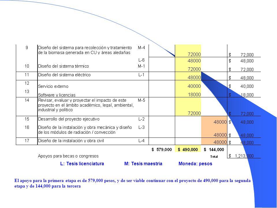 L: Tesis licenciatura M: Tesis maestríaMoneda: pesos El apoyo para la primera etapa es de 579,000 pesos, y de ser viable continuar con el proyecto de