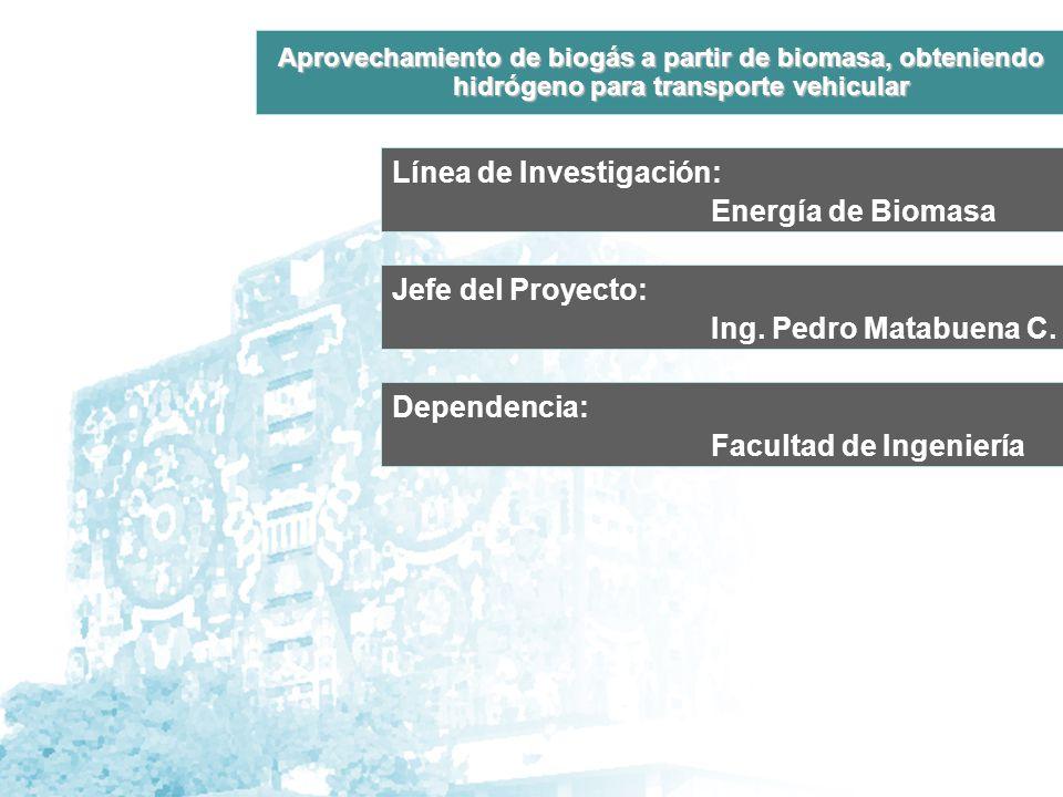 Línea de Investigación: Energía de Biomasa Jefe del Proyecto: Ing.