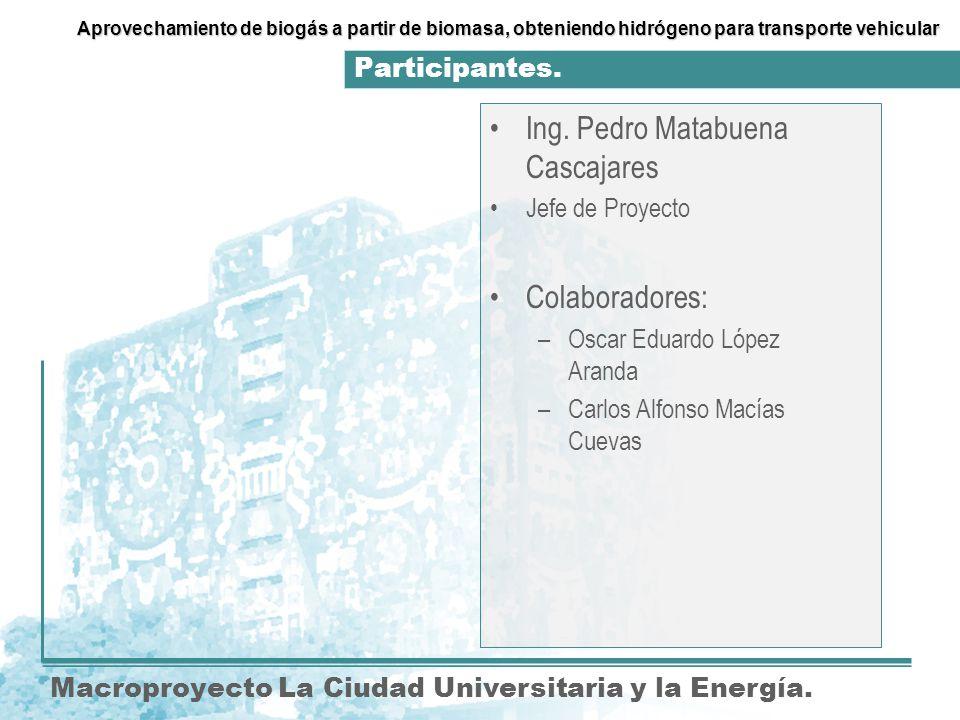 Participantes.Macroproyecto La Ciudad Universitaria y la Energía.