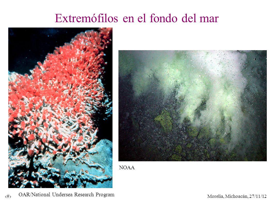Morelia, Michoacán, 27/11/12 17 Extremófilos en el fondo del mar OAR/National Undersea Research Program NOAA
